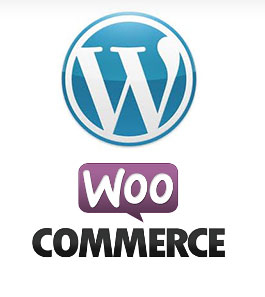 maryland wordpress ecommerce